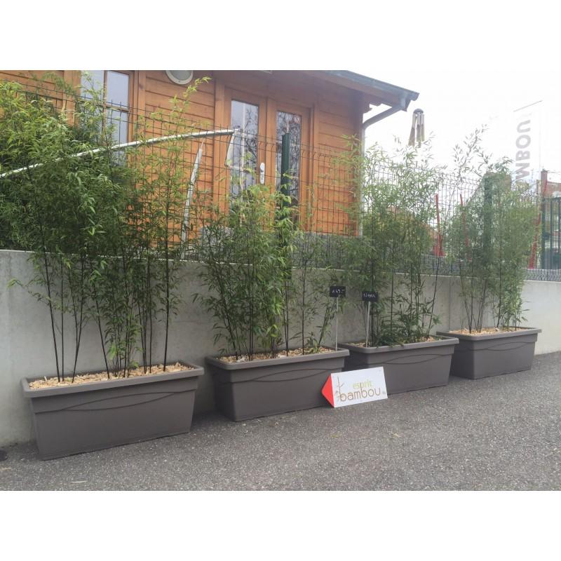 jardini re pr t poser avec bambous au choix. Black Bedroom Furniture Sets. Home Design Ideas