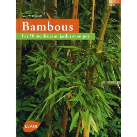 Bambous - Les 50 meilleurs au jardin