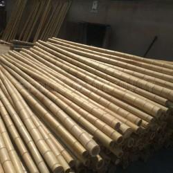 Tiges de bambous secs de Chine (Phyllostachys iridescens / pubescens)